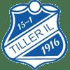 Tiller