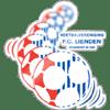 FC Lienden