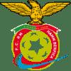 Hamm Benfica