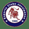 Jacuipense