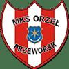 Orzel Przeworsk