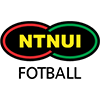 NTNUI 2