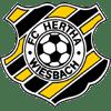 FC Hertha Wiesbach
