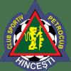 FC Petrocub Sarata-Galbena