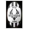 FC Blackbird