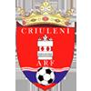 ARF Criuleni W