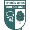 SV GW Brieselang