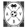 Aarhus Black Vipers