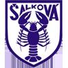FC Salkova