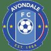 Avondale Heights FC U20