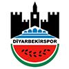 Diyarbekirspor U19