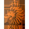 Netherlands-U19